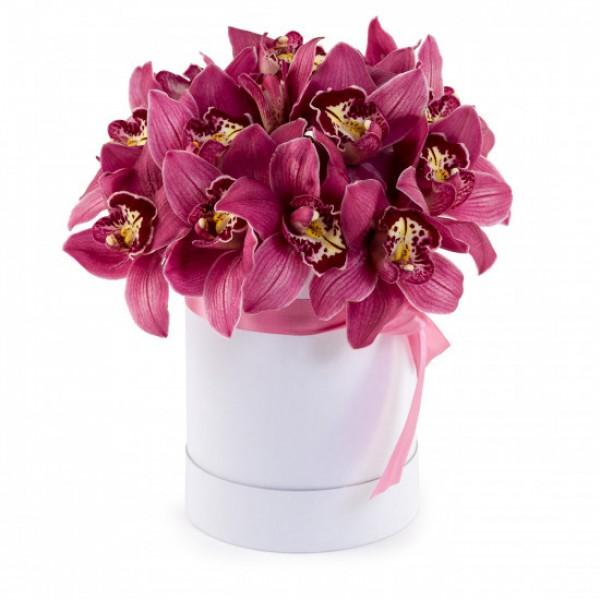 Цветы в коробке Стефания